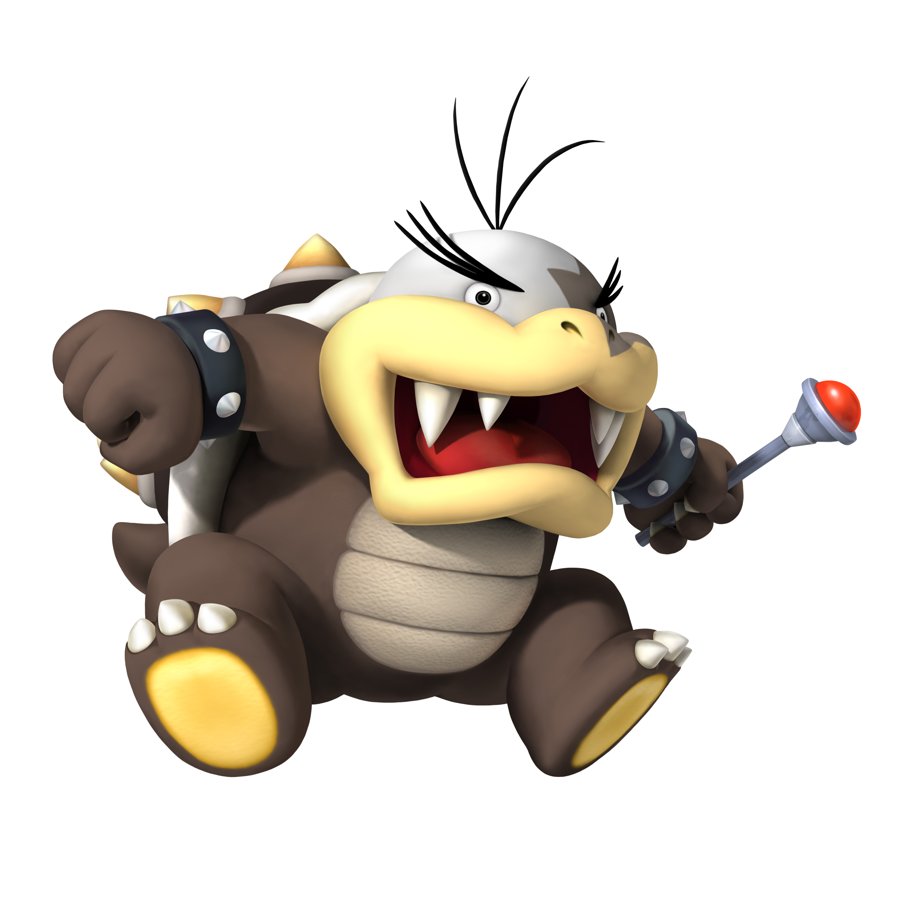 How Would One Classify Bowser's Feet?