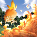 Torchic using Burn - Pokemon Ranger.jpg