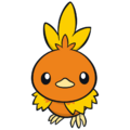 Torchic - Pokemon corporate.png