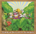Box Artwork (alt) - Wario Land 4.png