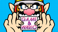 Box Image NA - Game & Wario.png