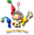 Nice To Meet You - Pikmin.png